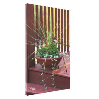 Potted plants Stretched Canvas Print