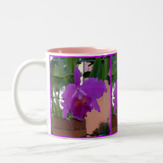 Potted Purple Orchid Pink Wall Two-Tone Coffee Mug