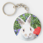 Potted rabbiit key chains