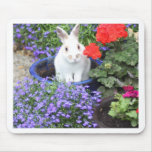 Potted rabbiit mouse mats