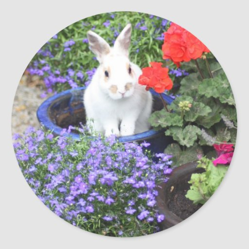 Potted rabbit classic round sticker