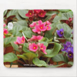 Potted Violets Mouse Pads