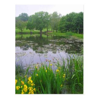 Potter Lake in Lawrence, Kansas, Postcard