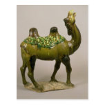 Pottery Chinese wailing camel Postcard