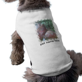 Pottery Pet Clothing