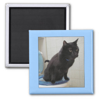 Potty Trained 2 Inch Square Magnet