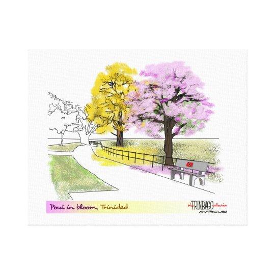 Poui in Bloom Canvas Print