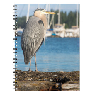 Poulsbo Great Blue Heron perched Notebook
