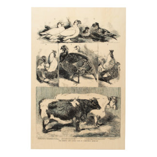 Poultry And Cattle Show 1860 - Wood Wall Art