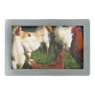 Poultry Belt Buckle