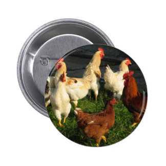 Poultry Button