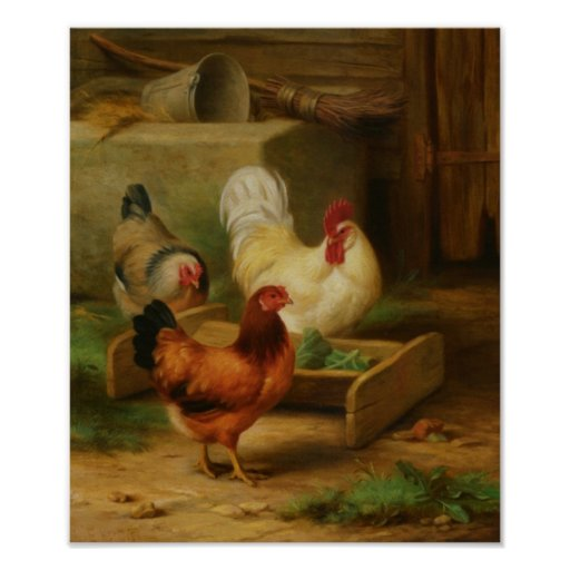 Poultry Feeding in a Barn Poster