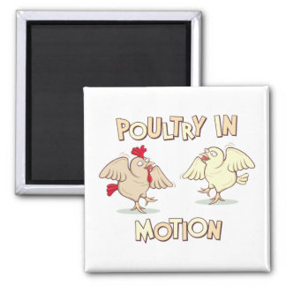 Poultry in Motion 2 Inch Square Magnet