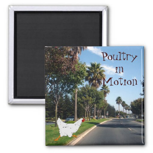 Poultry in Motion Fridge Magnets