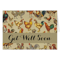 Poultry Rooster Chicken country get well