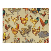 Poultry Rooster Chicken country vintage art Postcard