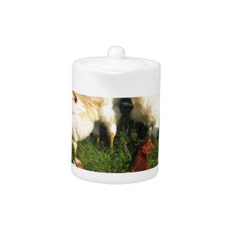 Poultry Teapot
