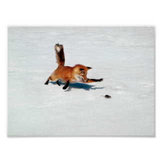 Pouncing Fox Posters
