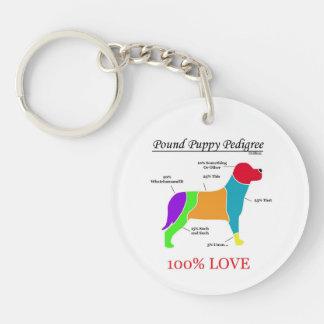 Pound Puppy Pedigree Keychain