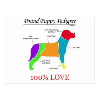 Pound Puppy Pedigree Postcard