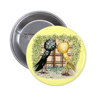 Pouter:  Brunners Pinback Button