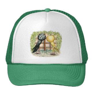 Pouter:  Brunners Trucker Hat