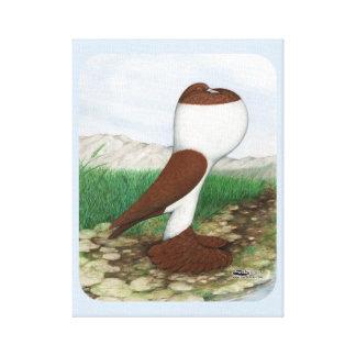 Pouter Pigeon Red Hana Canvas Print