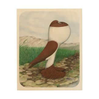 Pouter Pigeon Red Hana Wood Print
