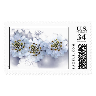 Powder Blue Flowers Postage