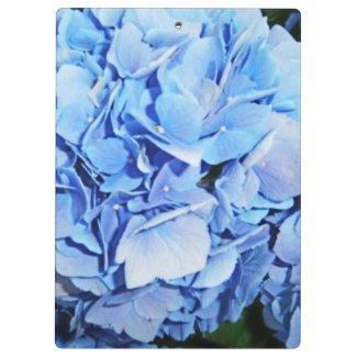 Powder Blue Hydrangea Clipboard