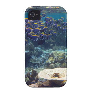 Powder Blue Surgeon Fish Case For The iPhone 4