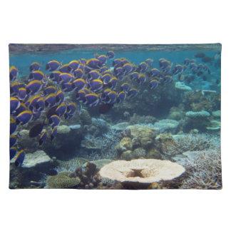 Powder Blue Surgeon Fish Cloth Placemat