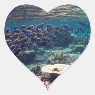 Powder Blue Surgeon Fish Heart Sticker