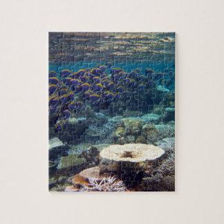 Powder Blue Surgeon Fish Jigsaw Puzzles