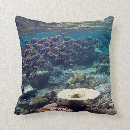 Powder Blue Surgeon Fish Pillows