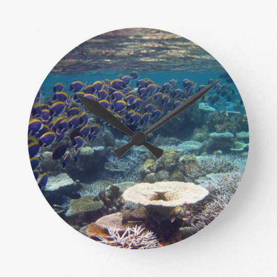 Powder Blue Surgeon Fish Round Clock