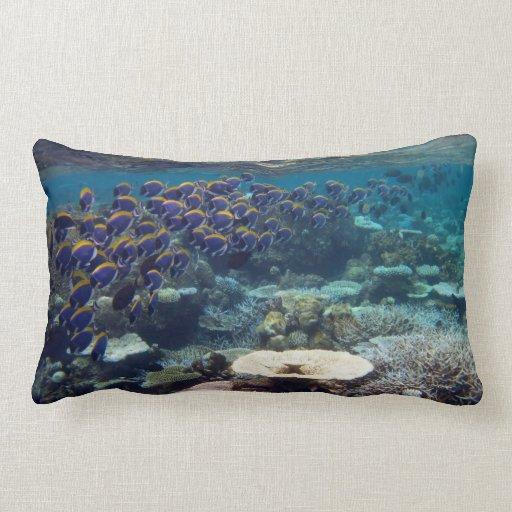 Powder Blue Surgeon Fish Throw Pillow