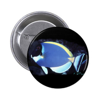 Powder Blue Tang 2 Inch Round Button