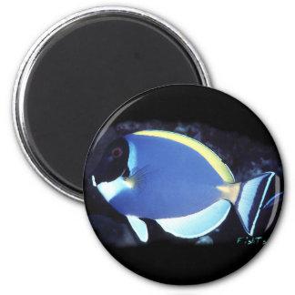Powder Blue Tang 2 Inch Round Magnet