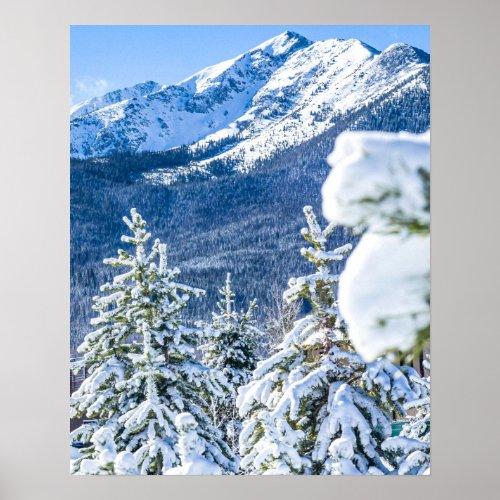 Powder Forest // Blue Snow Cap Mountain