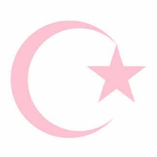 Powder Pink Crescent & Star.png Cut Out