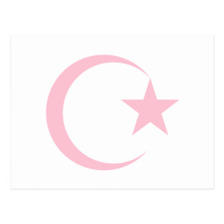 Powder Pink Crescent & Star.png Post Card