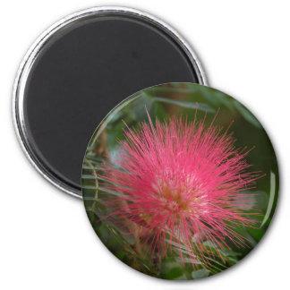 Powder Puff 2 2 Inch Round Magnet