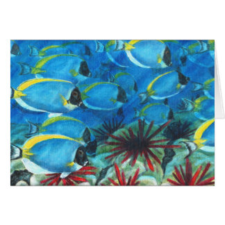 Powdered blue tangs cards