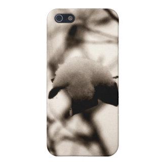 Powdered Snow iPhone 4 Case