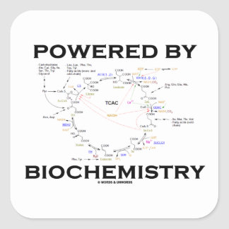 Powered By Biochemistry (Krebs Cycle) Square Sticker