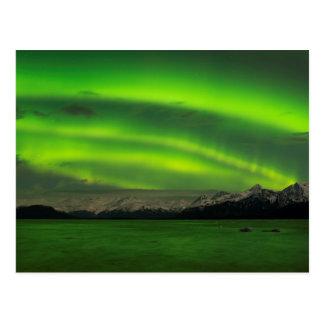 Powerful Aurora Postcard
