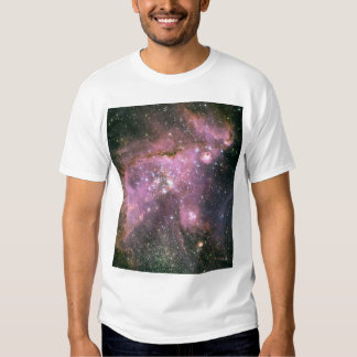 Powerful Outflows in the Small Magellanic Cloud T-shirt