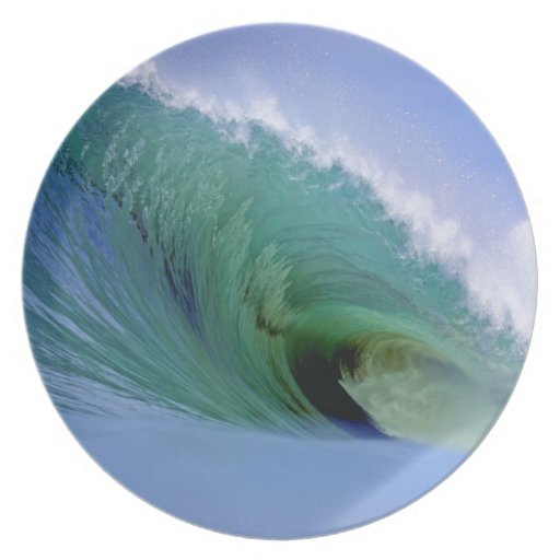 Powerful surfing wave dinner plates