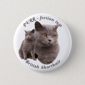 PPURR-fection British shorthair Blue Pinback Button
